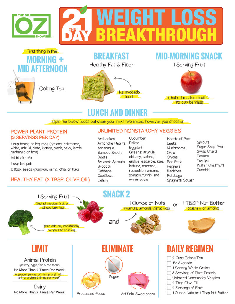 dr oz 21 day weight loss diet meal plan  u2013 free diet plan